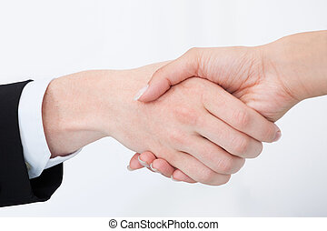 Cropped Image Of Business People Shaking Hands - Cropped...