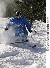 Freeride Skier in powder snow.