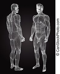 3d wireframe male - High resolution concept or conceptual 3d...