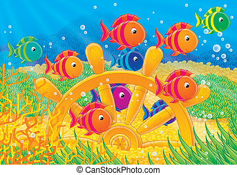 Coral fishes - Colorful fishes swimming over a steering...