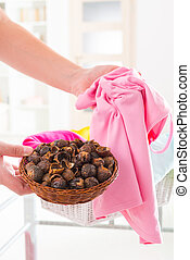 Soap nuts - Woman's hands holding a basket full of soap nuts