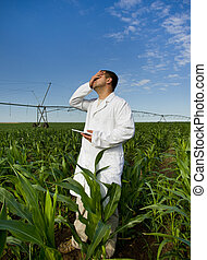 Agronomist in corn field - Agronomist in white coat with...