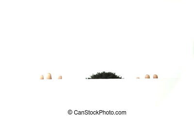 Black man isolated on white - Afro-american man isolated...