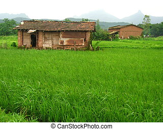 Beautiful Indian village landscape - A beautiful Indian hut...