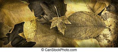 Autumn Leaves Banner - Grunge Golden Autumn Leafy background...