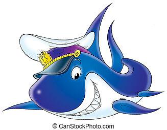 Shark captain - Great white shark with a captain cap, on a...