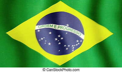 Brasil National Flag - Brazilian national flag in the wind....