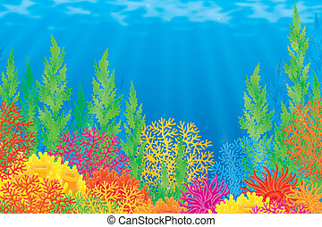 Coral reef - Underwater background with corals of a tropical...