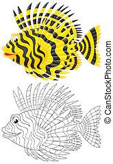 Scorpion-fish - Tropical scorpion fish, color illustration...