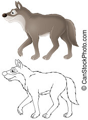 Wolf - grey wolf, isolated color drawing and black-and-white...