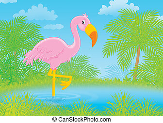 Pink flamingo - Flamingo standing in water of a tropical...