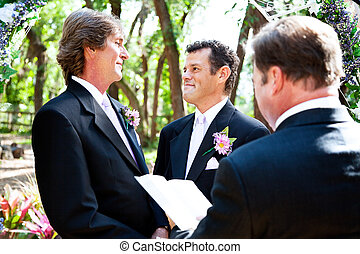 Wedding Vows - Gay male couple saying their marriage vows...