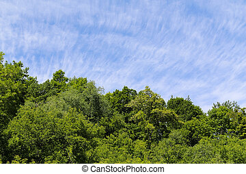 Green Hills and Clear Sky - Green Hill and Clear sky...