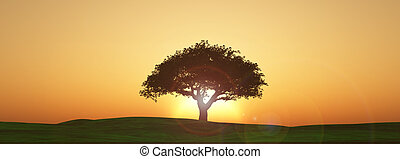 Widescreen sunset tree landscape - 3D render of a sunset...