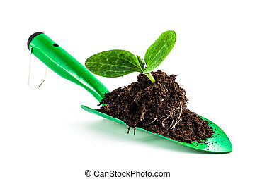 Young plant on gardening tool - Green garden shovel isolated...