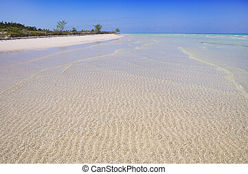 Cayo coco beach - A view of tropical beach in cayo coco,...