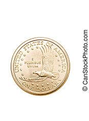 dollar coin isolated