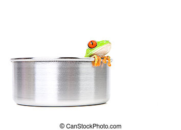 frog on cooking pot - frog in a cooking pot closeup isolated...