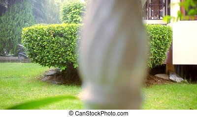 Blurred classical columns banister and rain outdoor. Video...