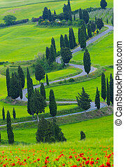 Beautiful landscape of Tuscany with the twisting road and...