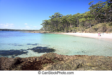 Bristol Point NSW Australia - Beautiful lsecluded bushland...
