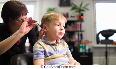 Child getting a haircut from a professional hairdresser -...