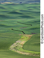 Palouse landscape - Farms on the rolling hills near Palouse,...
