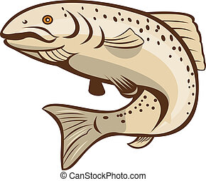 Rainbow Trout Jumping Cartoon - Illustration of a rainbow...