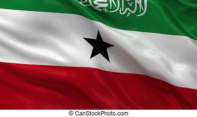 Flag of Somaliland seamless loop - Flag of Somaliland gently...