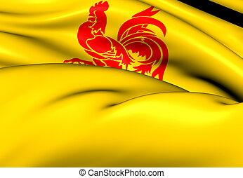 Flag of Wallonia Close Up