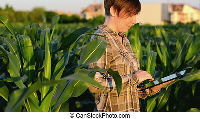Woman agronomist using tablet pc - Woman agronomist using...