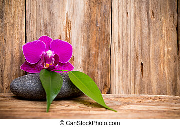 Spa - Orchids flowers on wooden background spa massage...