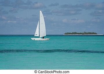 Catamaran - Sailing catamaran on the ocean. Island in the...