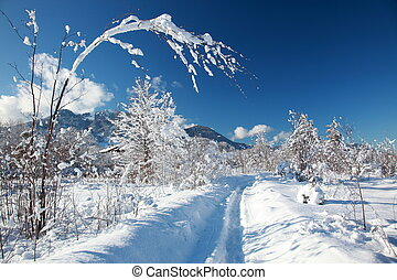 winter way - snowy winter way in the bavarian mountains