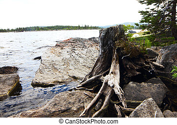 Lake shore - Beautiful landscape with lake shore, stones and...