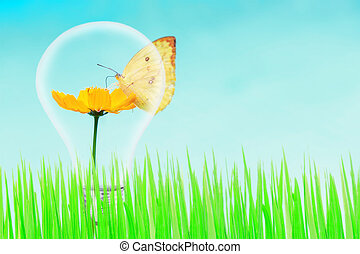 butterfly and yellow flower and green grass with light bulb