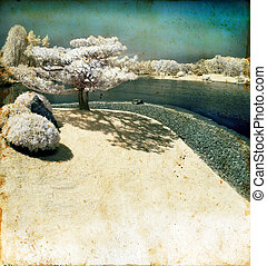 Infrared Pine Tree by The Lake on Grunge Background