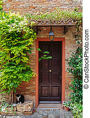 Entrance to the old Italian house and the cat on the...