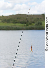 Fishing pole with bait