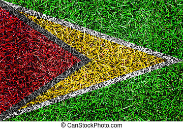 Guyana Bissau Flag color grass texture background - Guyana...