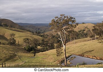 Farming Country - Rural Landscape of New South Wales,...