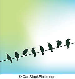 birds on a wire - A row of birds on a wire against a sky...