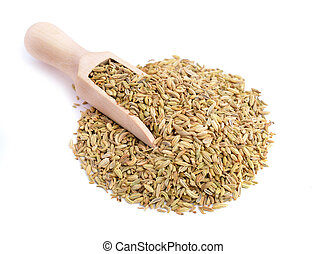 Fennel seeds isolated