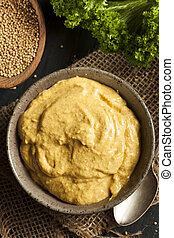 Homemade Spicy Mustard Sauce on a Background
