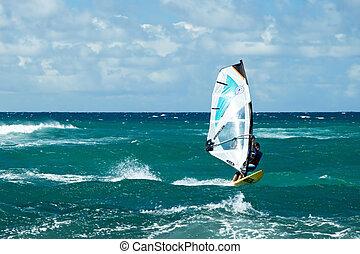 Windsurfers in windy weather on Maui Island - MAUI, HAWAII -...