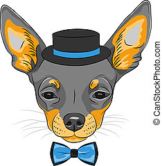 vector cartoon hipster dog Chihuahua breed - color sketch of...