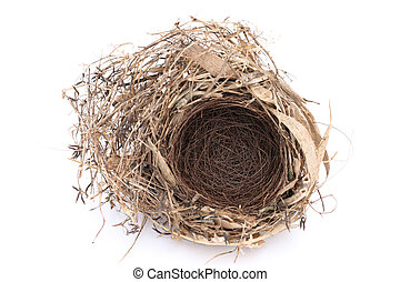 empty bird nest - Detail of empty bird nest on white...