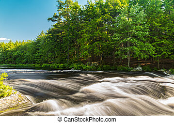 River in the forest Kejimkujik National Park , Nova Scotia,...