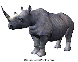 Standing rhinoceros - 3D rendered model of african...