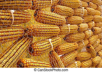 Cobs - Composition of corn cobs